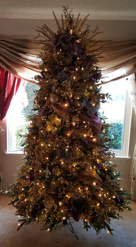 20171203_153901_Residential_Purple and Gold pic 1